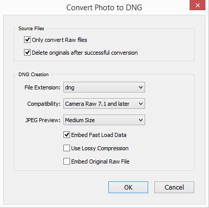 convert-photos-dialog